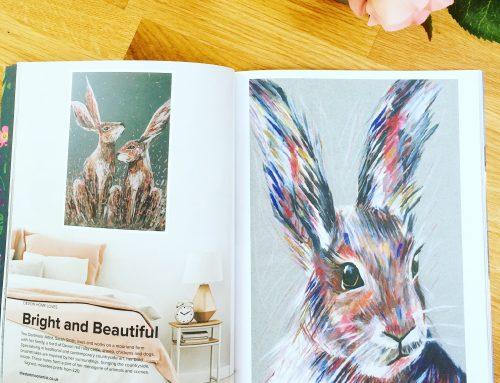 Feature in Devon Home Magazine