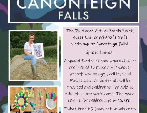 Hosting Children's Art/Craft Workshops at Canonteign Falls!