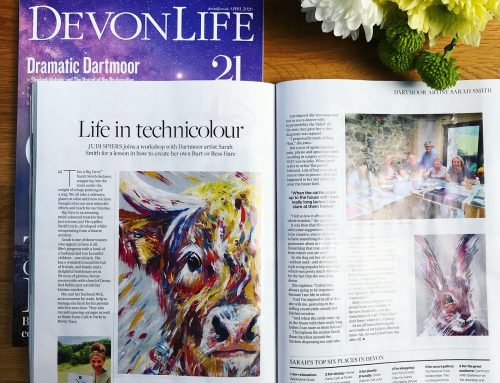 Devon Life Feature!